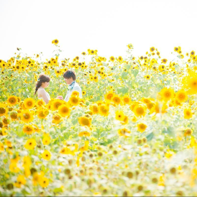 花畑ロケーション