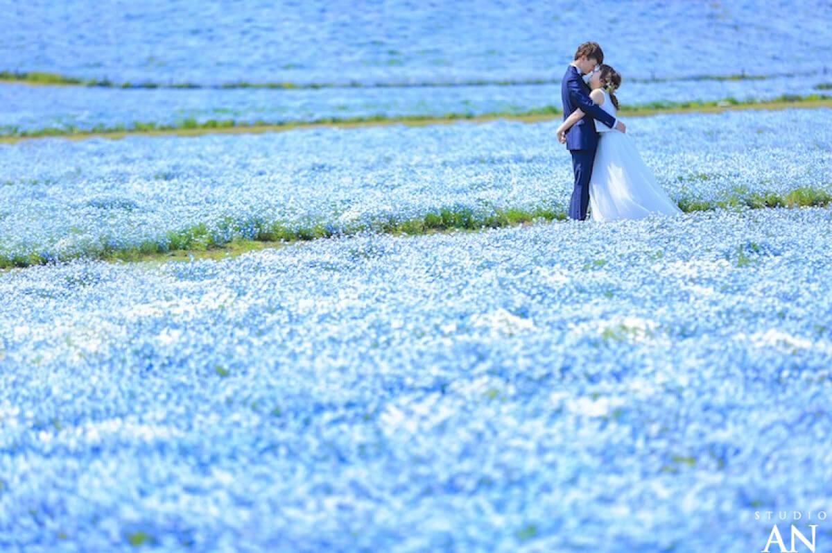 海ノ中道海浜公園