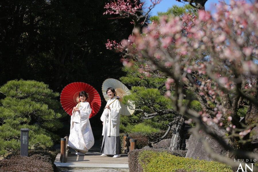 梅の花咲く日本庭園で