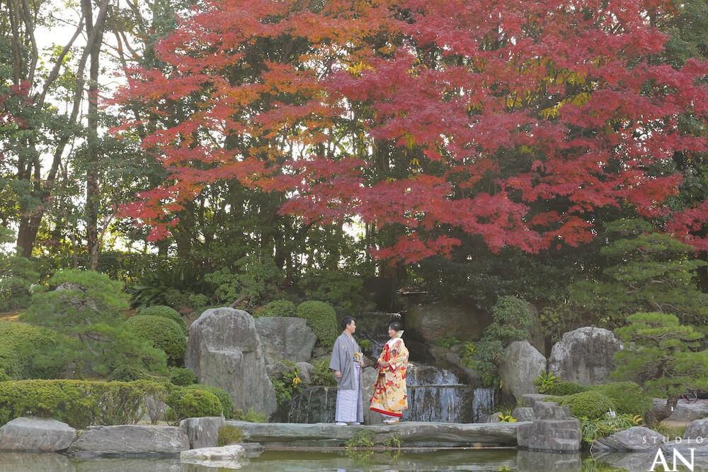 12月 大濠日本庭園紅葉情報